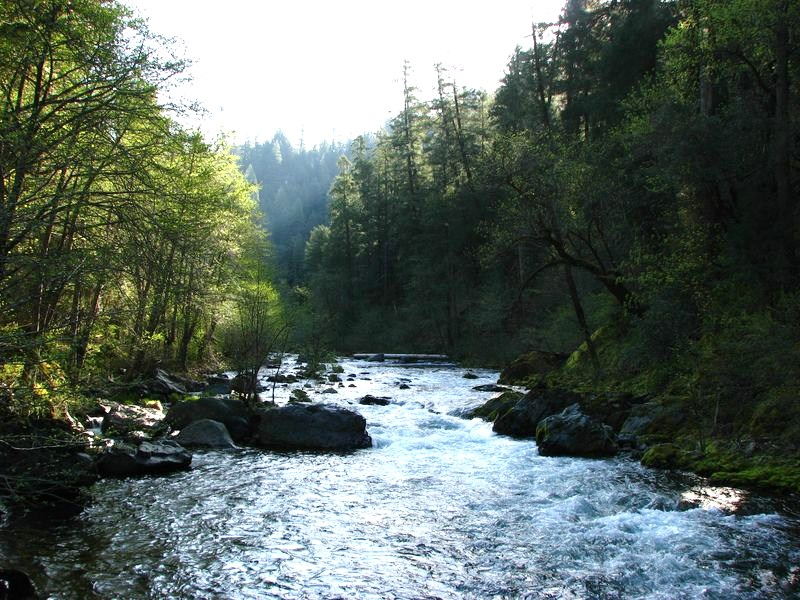McCloud River Nature Conservancy | mtshasta.com - jack trout's weblog