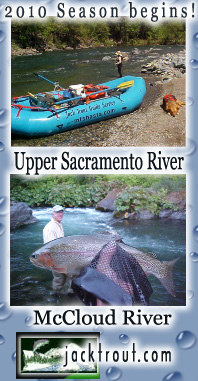 More information regarding fly fishing the Sac & McCloud Click here!