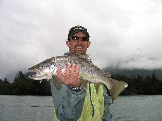 Chile Jack Trout Nice Brown