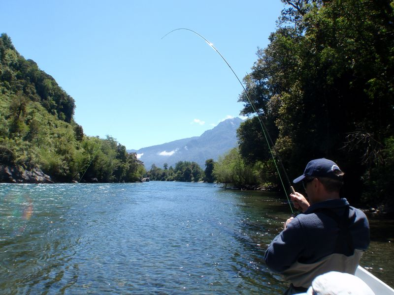 Image result for Fishing in Chile