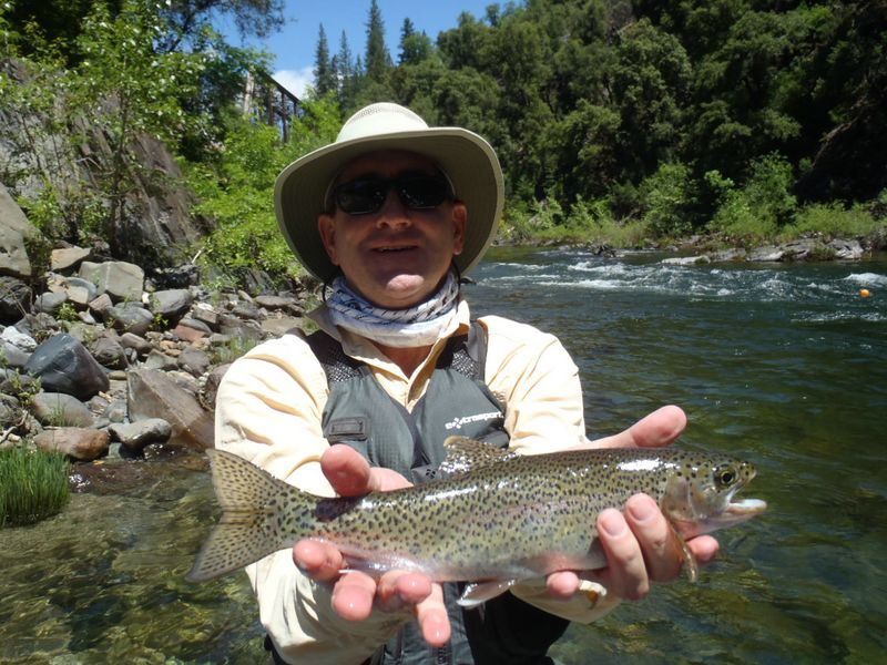 Fly fishing blog northern california jack for Trout fishing northern california