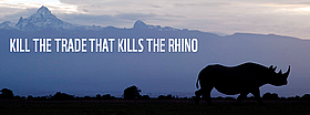Rhino Save them!
