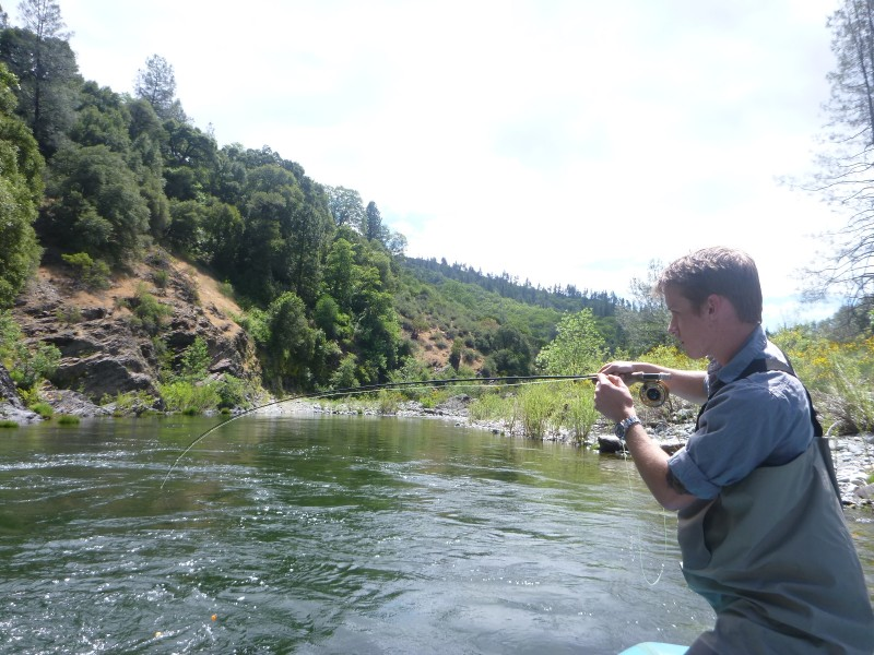 Jack Trout Fly Fishing Upper Sac