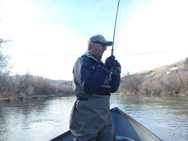 Best steelhead fishing california 2014 for Trout fishing southern california