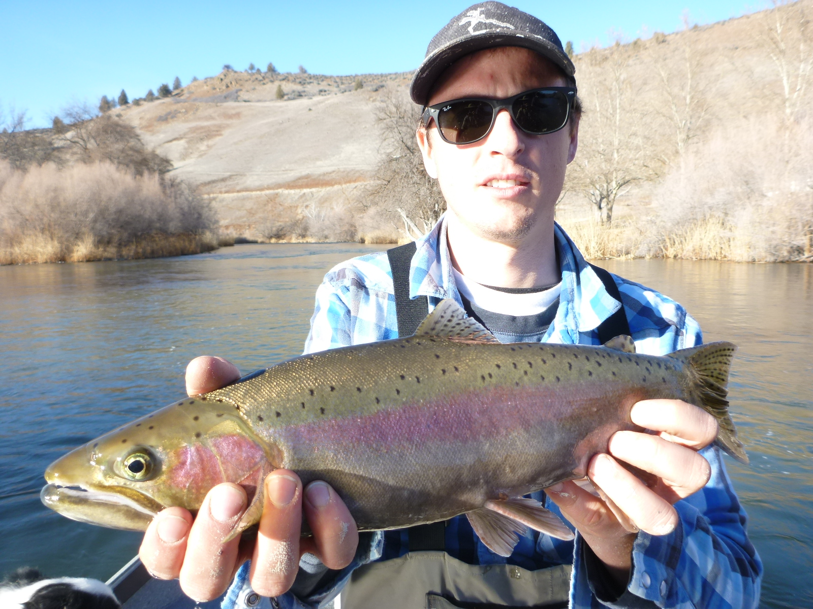 Klamath river 2014 fly fishing report for Klamath river fishing report