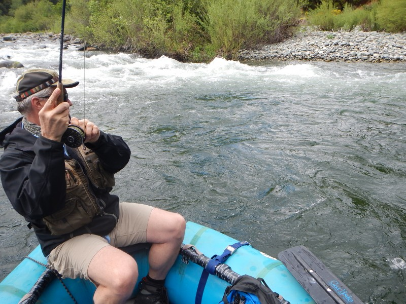 Northern california fly fishing blog trout unlimited for Best trout fishing near me