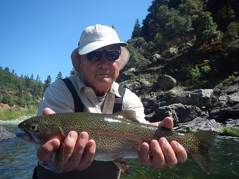 June salmon stonefly bugs now in northern california rivers for Salmon fishing northern california