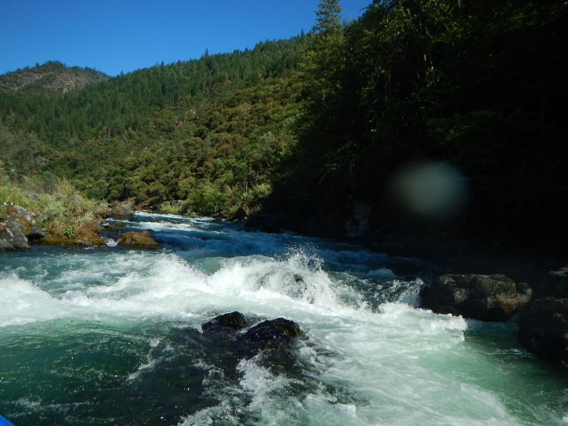 Northern california fly fishing report trout unlimited for Trinity river fishing spots