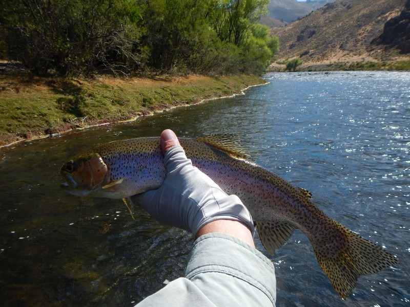 Best dream fly fishing trips to argentina chile trout for Best trout fishing near me