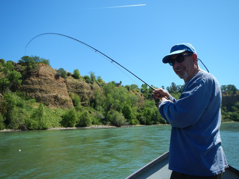 Lower Sac Redding Jack Trout Fly Fishing