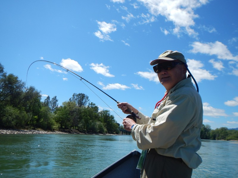 Lower Sacramento River Jack Trout Fly Fishing
