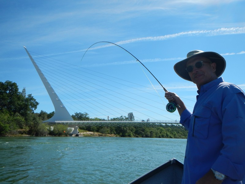 Northern california fly fishing summer report trout for Surf fishing northern california
