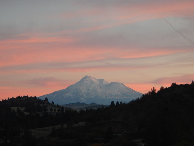 Mount Shasta by Jack Trout 2015
