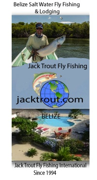 Belize Fly Fishing Jack Trout