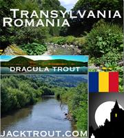 Romania Banner