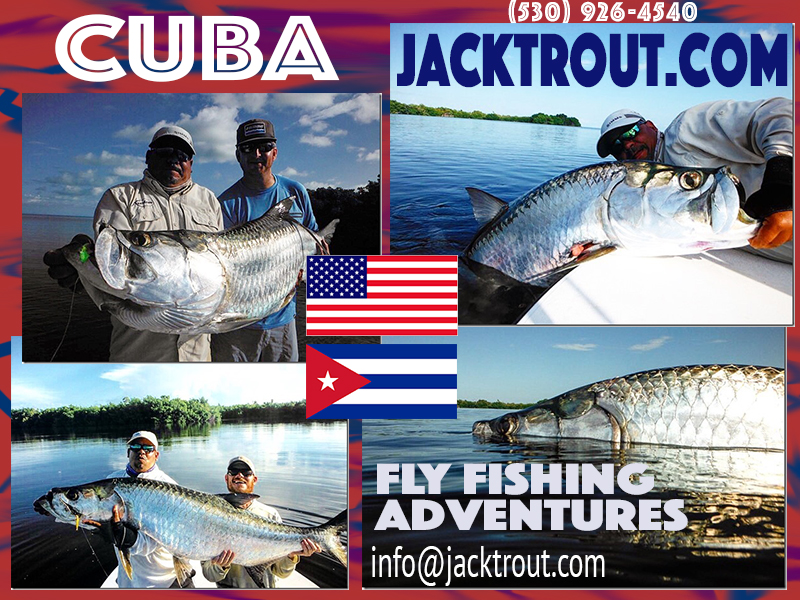 Jack Trout Fly Fishing Cuba