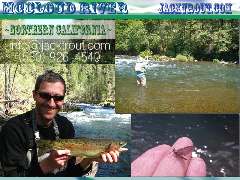 McCloud Fly fishing Banner