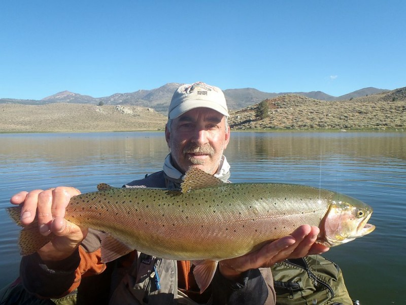 Nevada Fly Fishing Jack Trout FFI