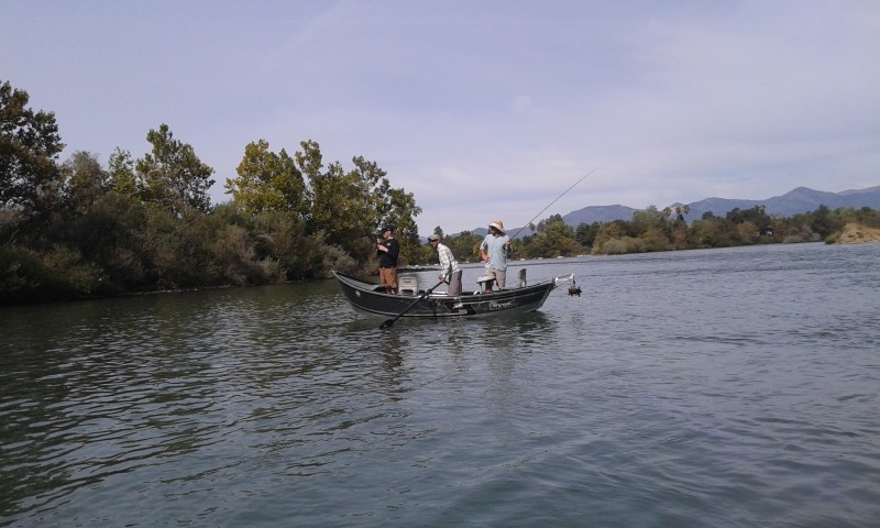 Lower Sacramento River Fishing