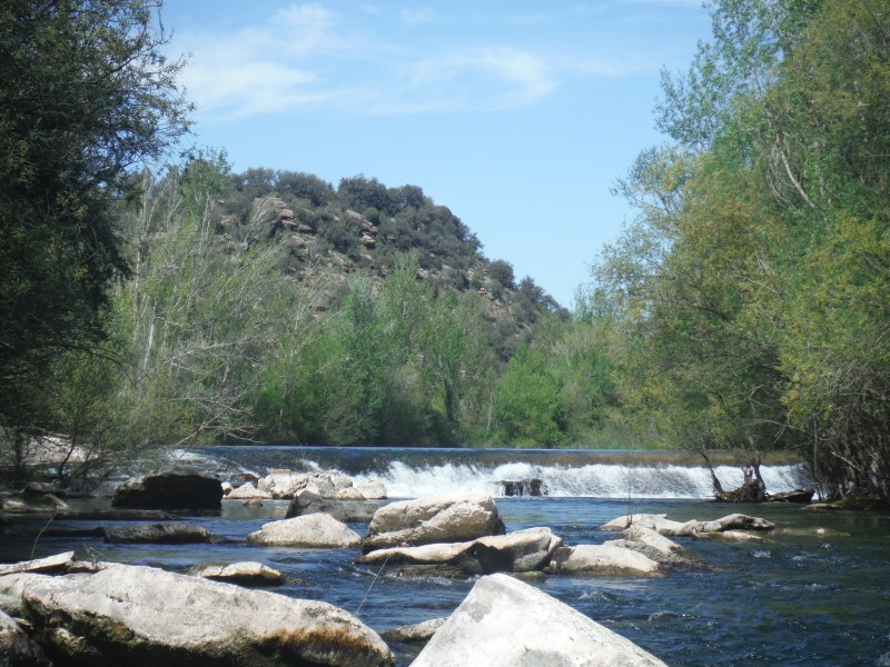 Guides for fly fishing near Barcelona