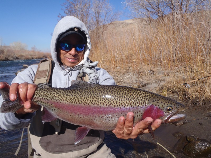Fly Fishing Truckee River