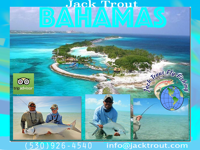 Bahamas One Day Fly Fishing Trips
