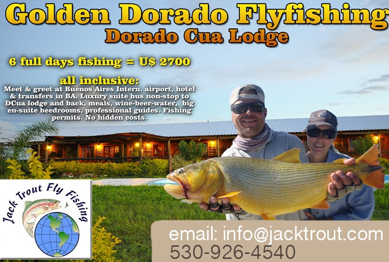 Fly Fishing Golden Dorado