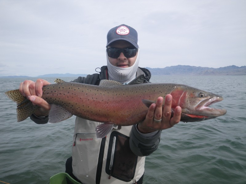 Fly Fishing Pyramid Lake
