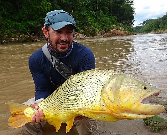 Golden Dorado Bolivia Fishing