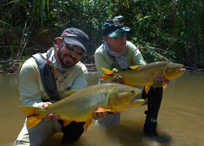 Fly Fishing Golden Dorado Bolivia