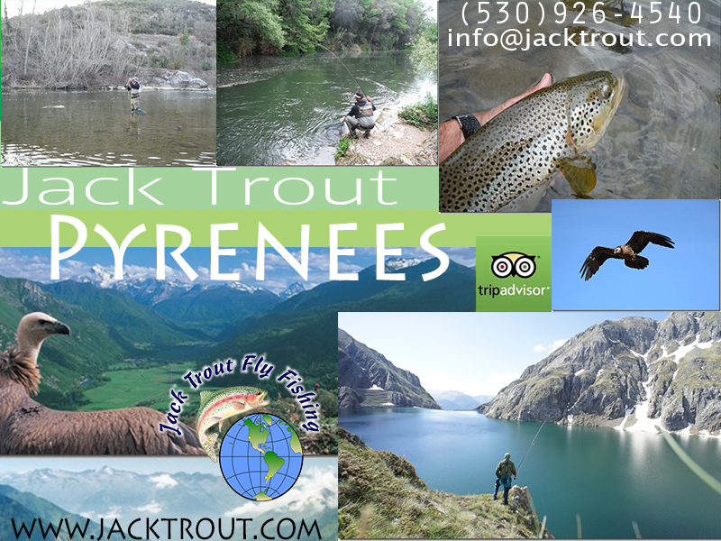 Fly Fishing Spain Pyrenees