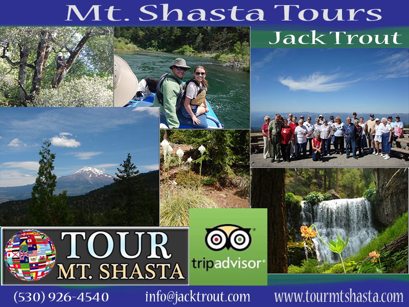 Mount Shasta Tours