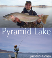fishing pyramid lake