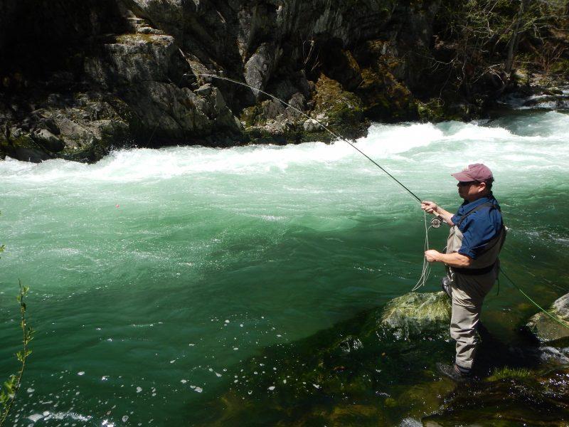 Spring fly fishing northern california oregon best for Trout fishing northern california