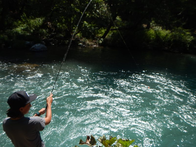Youth Fly Fishing Instruction California