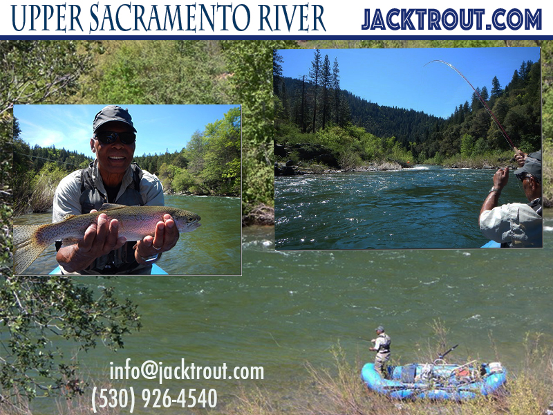 Upper Sacramento Banner Fly Fishing