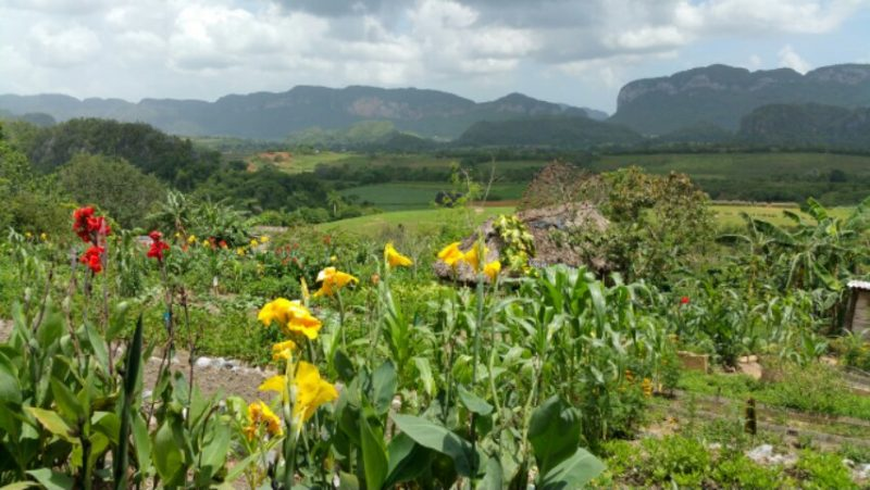 Tours to Vinales Valley Cuba