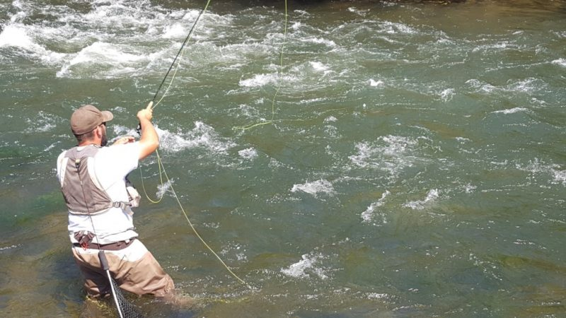Bay Area Fly Fishing Rivers