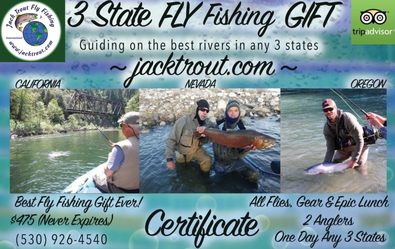Multi State Fly Fishing