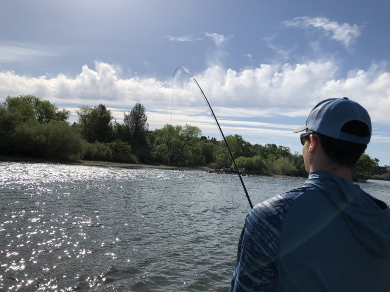 Group trips Lower Sacramento River