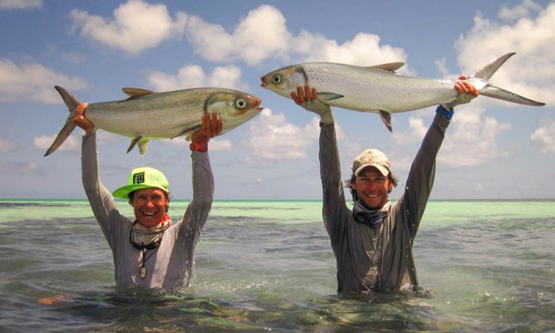 Fly fishing Seychelles