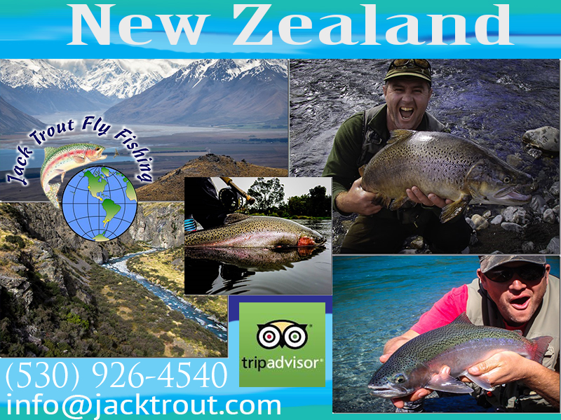 New Zealand Fly Fishing Cruise Trips