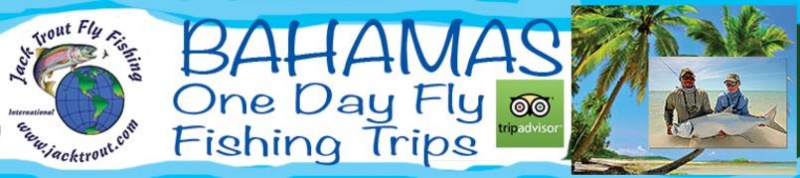 Bahamas Fly Fishing Trips