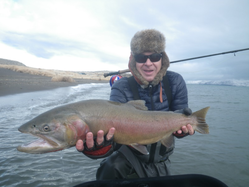 Pyramid Lake Lahontan Cutthroat Trout