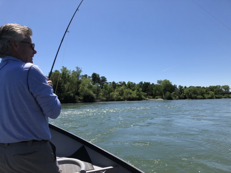 Spring 2019 fishing report Lower Sac