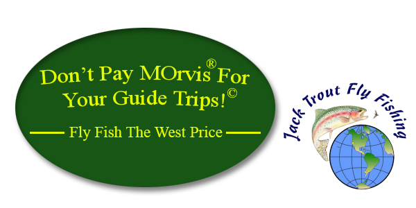Don't pay Morvis for fly fishing