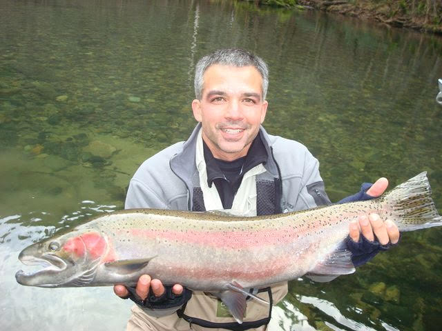 Fly fishing trout trinity river